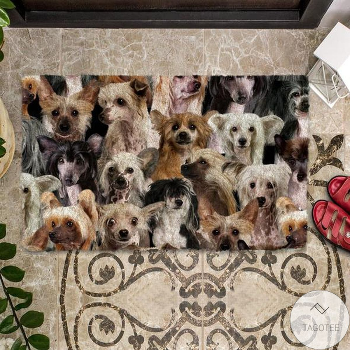 Print On Demand A Bunch Of Chinese Cresteds Doormat