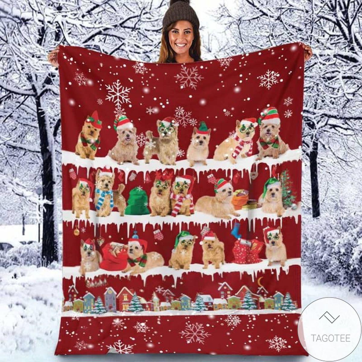 Norwich Terrier - Christmas Blanket